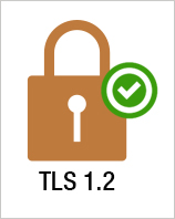 Upgrade to TLS 1.2 Standard Now and Continue Accepting Payments Securely